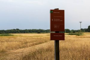 Wandelroutes in Sellingen
